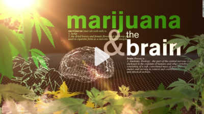 Cannabis use disorder, also known as marijuana use disorder, is associated with dependence on the use of weed. A person is considered dependent on weed when they feel food cravings or a lack of appetite, irritability, restlessness and mood and sleep difficulties after quitting, according to the National Institute on Drug Abuse.