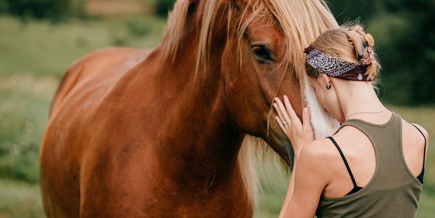 Horses Are Biologically Suited to Reduce Stress